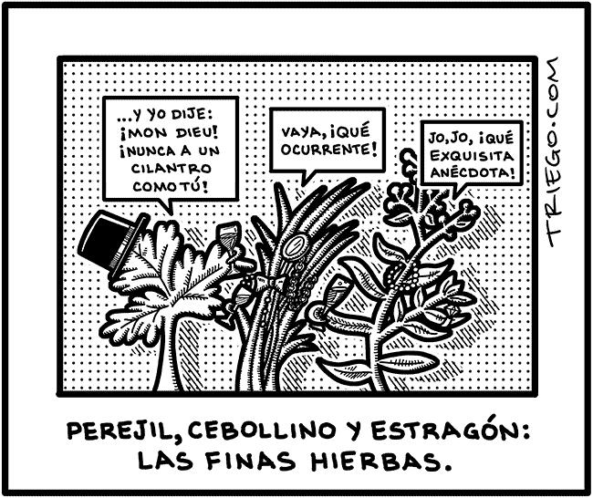 finas hierbas